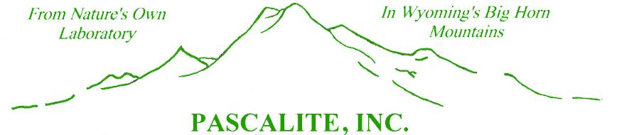 Pascalite, Inc. Logo