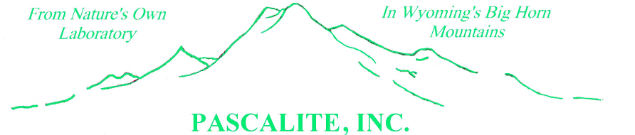 Logo, Pascalite, Inc. - Natural Remedies